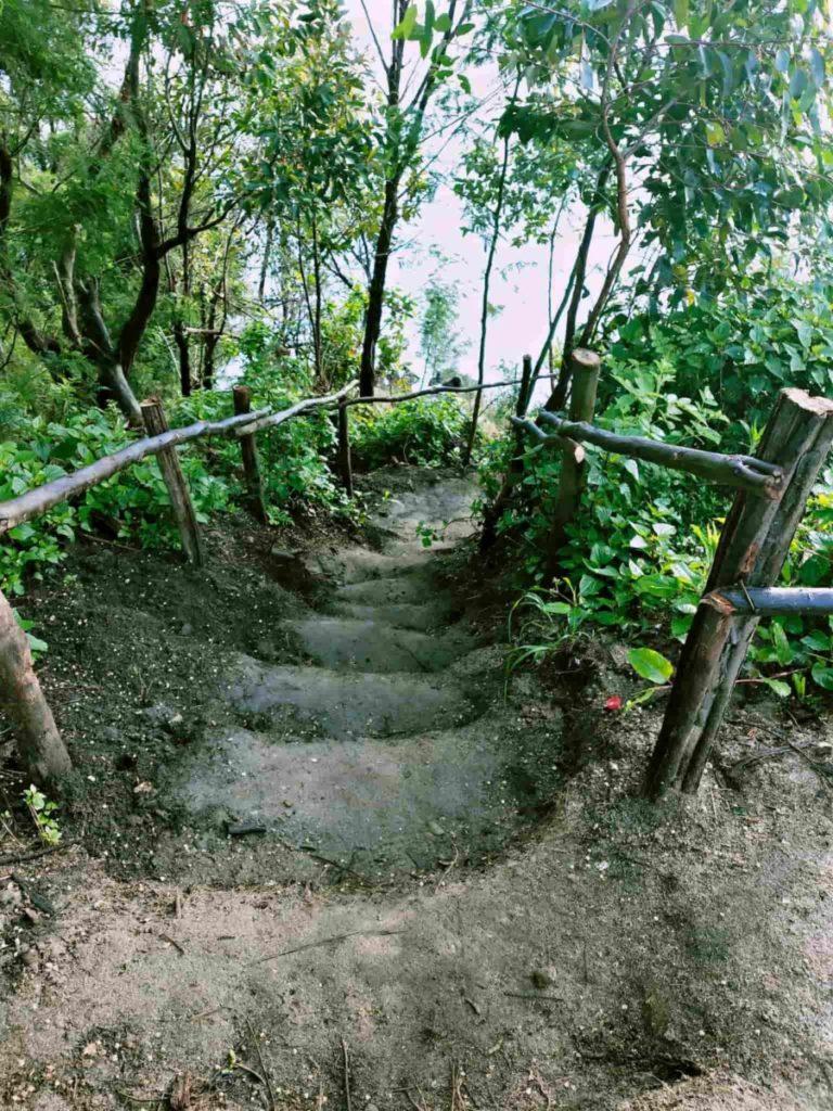 Kolukkumalai Trek path