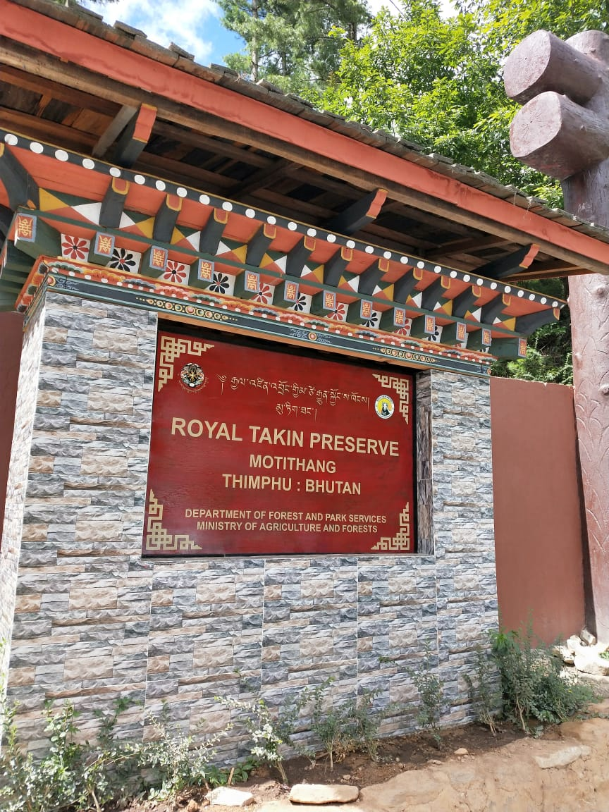 Royal Takin Preserve Thimphu Bhutan travel Blog