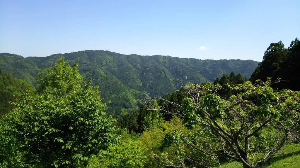 Kamiyama Town view