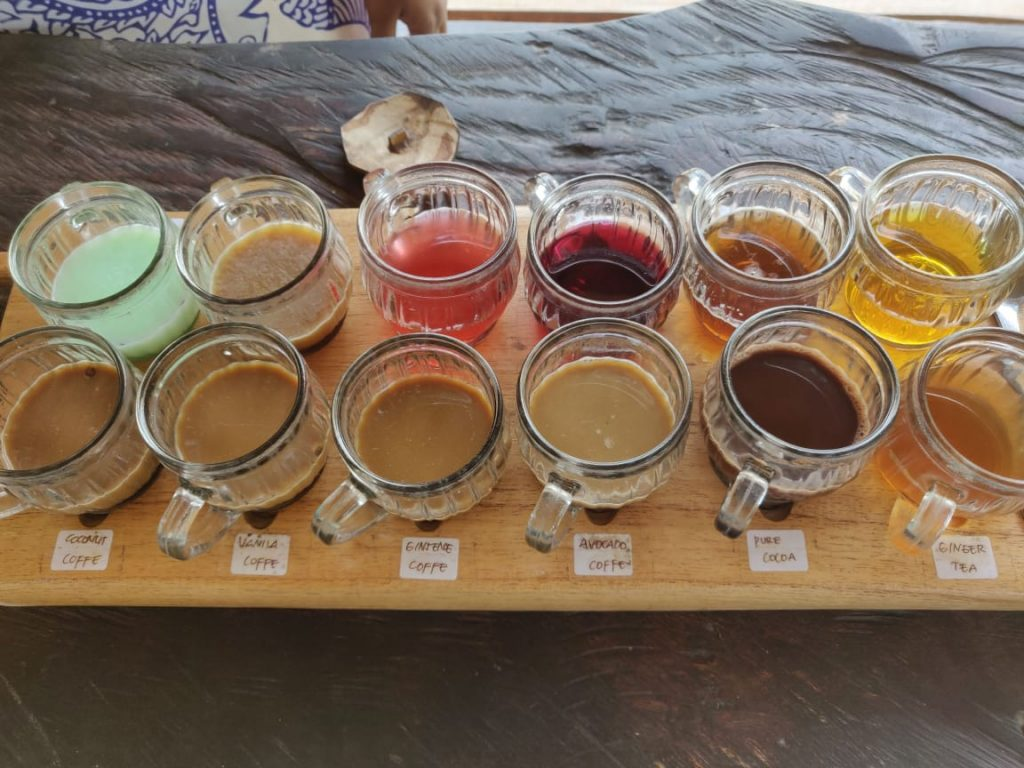 Tea Tasting experience in Bali