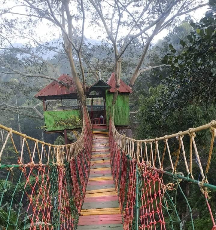 Munnar tree house stay is a top thing to do in Munnar
