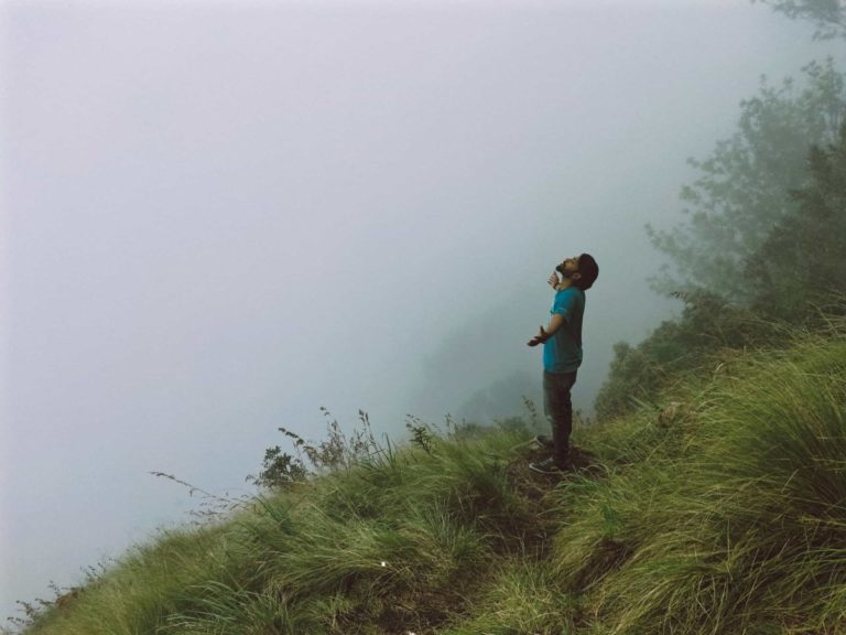 Fog at Top station Munnar things to do