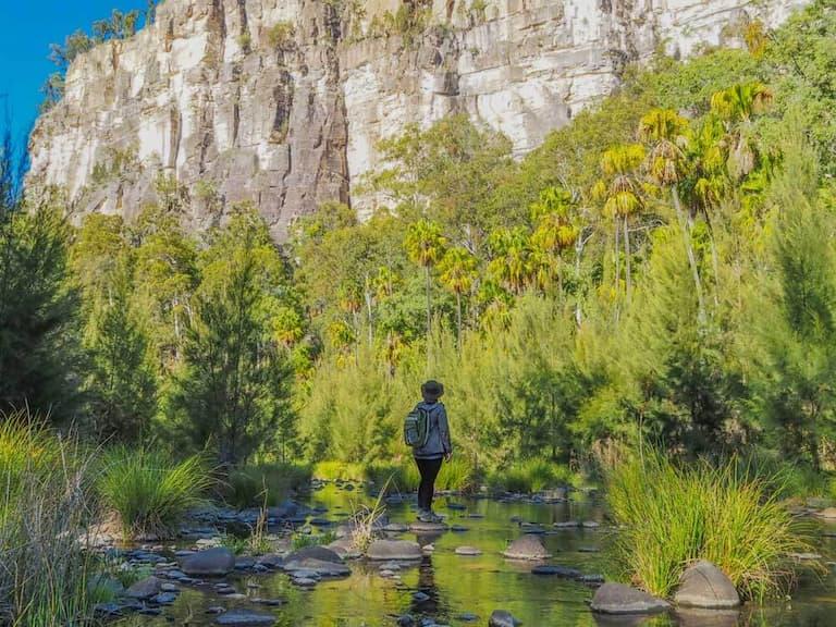 Carnarvon Gorge in Australia in best hiking trails in Oceania