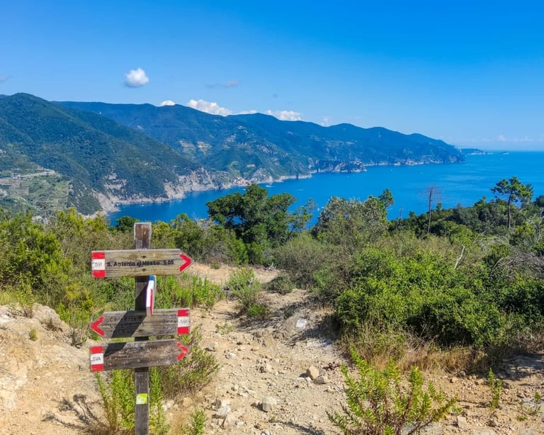 Cinque Terre hiking trail in Italy